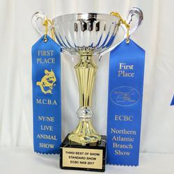 Jolly's awards