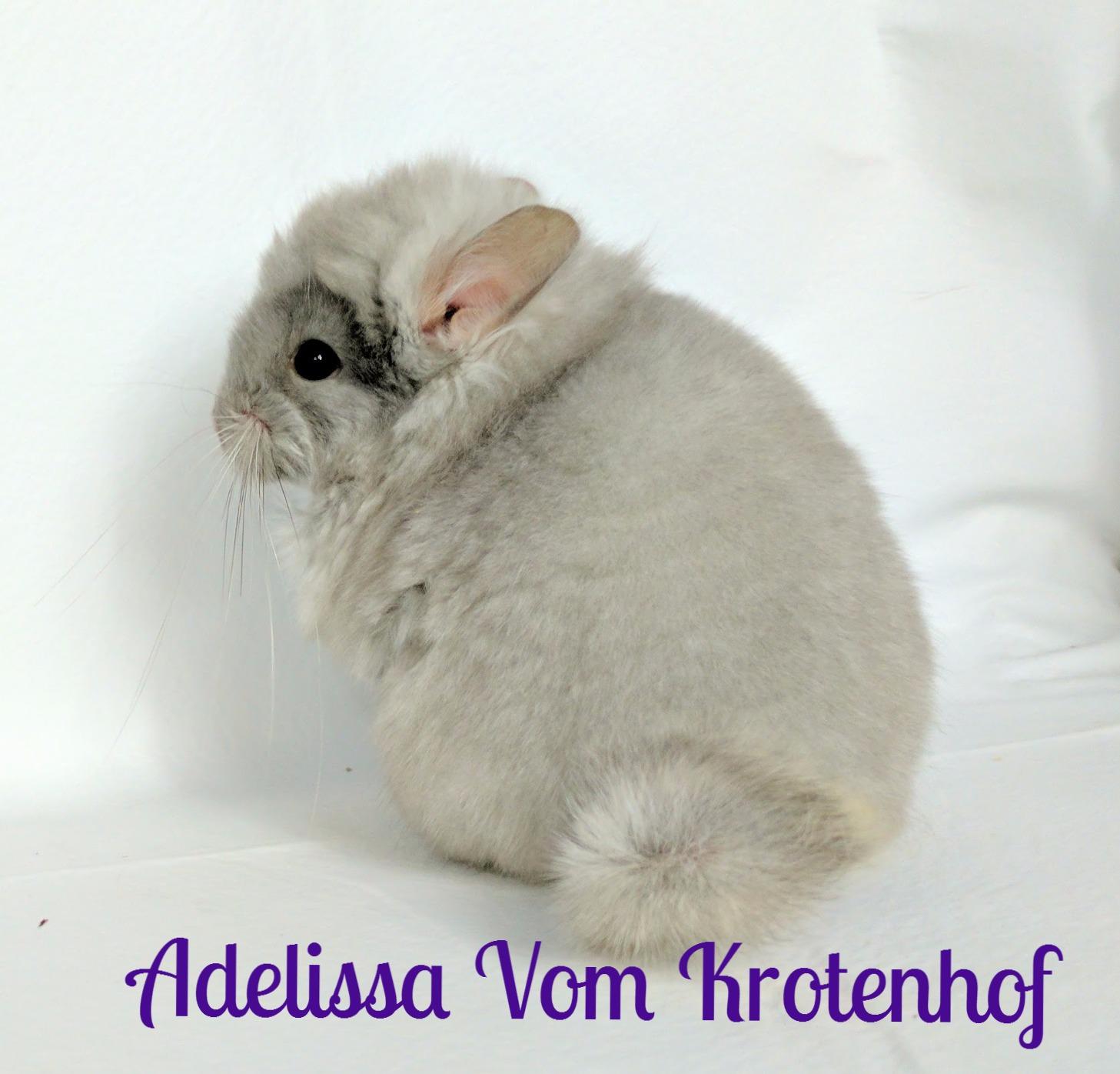 Adelissa 2 months