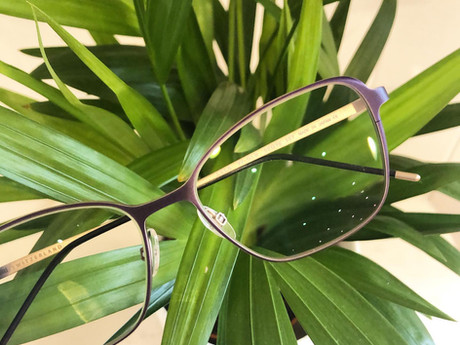 How Much Do Glasses Cost At P&A Eyecare?