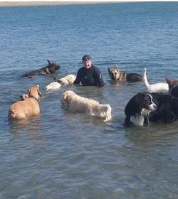 Pack Runs at the Beach