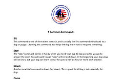 7_common_dog_commands_preview_edited.jpg