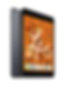 New iPad mini Spacegray.png