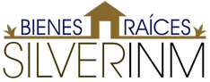 Silverinm Logo dorado2.webp