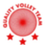 logo qvt.jpg