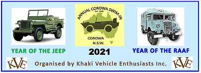 2021 swim-in number plate.png