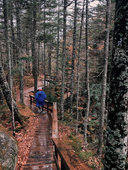 Grafton Notch State Park, Newry, Maine