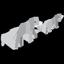 orimagi-assets-elephants.png