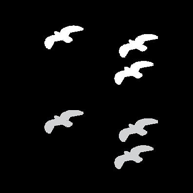 orimagi-assets-birds.png