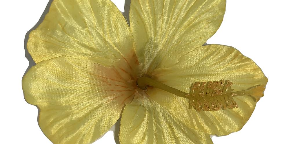 DEBBIE Single Hibiscus  -Yellow