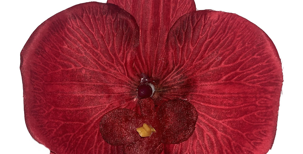 CLARA Flat Orchid - Red