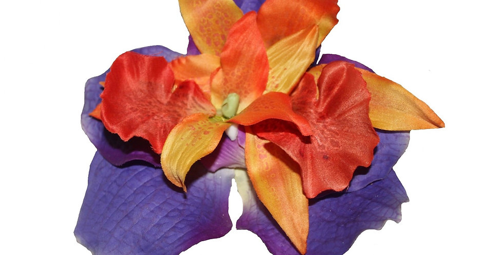 Purple and Orange Orchid