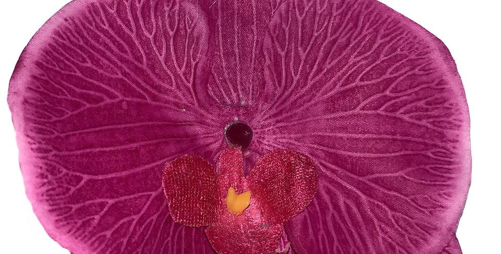 CLARA Flat Orchid - Pink