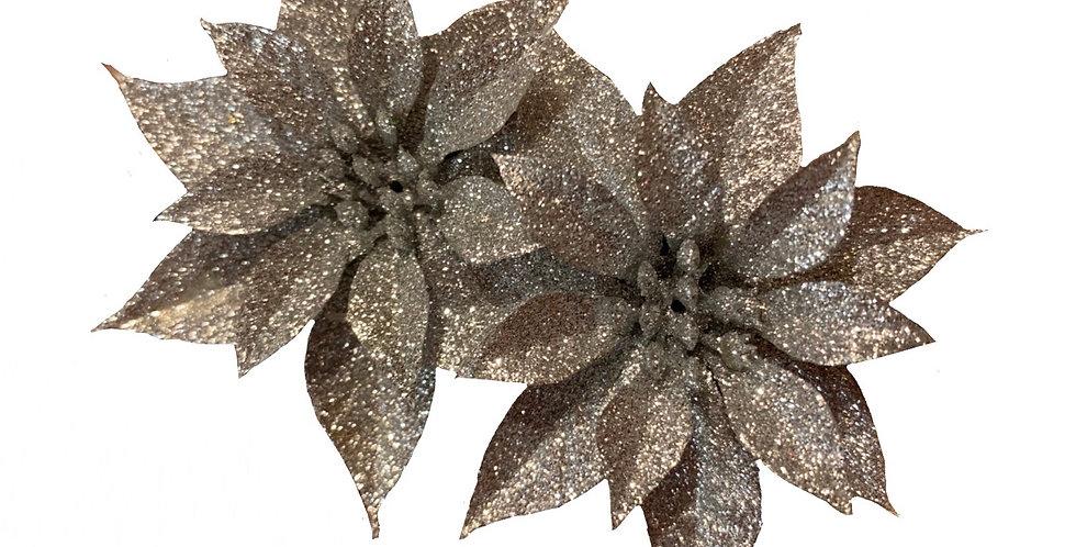 Silver Double Poinsettia