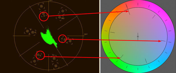 Palbergwerx design photography vancouver premiere color correction sample