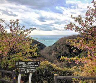 10/28(土)披露山整備活動下見へ