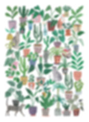 Plants and Cats illustration