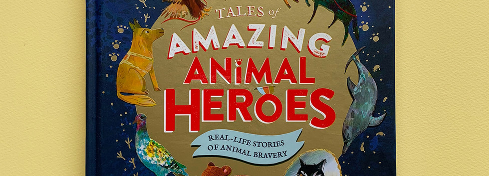 Animal Hero.jpg