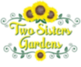TSG Logo_edited.jpg
