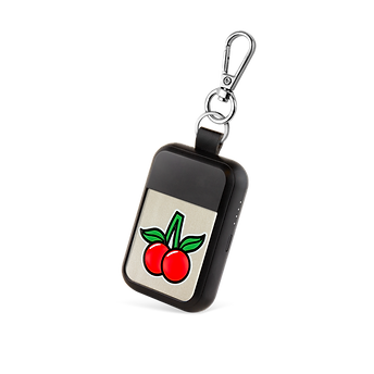 19_06_27 KEYWI_T1_Patch_berry.png