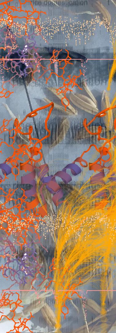 sh4_artwork.png