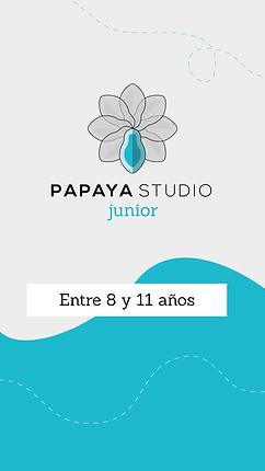 STORYS INSTAGRAM PAPAYA-03.png