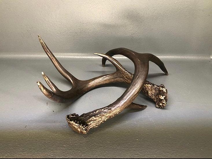 Bronze Cast Antlers
