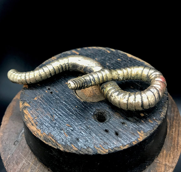 Bronze Worm #4 by Scott Long