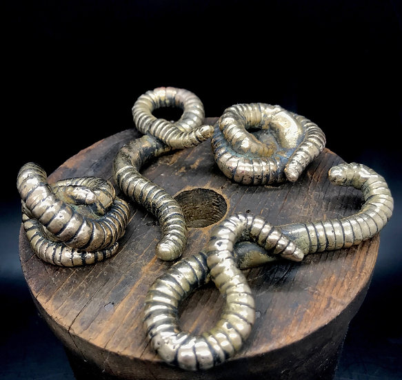 Bronze Worm #1 by Scott Long