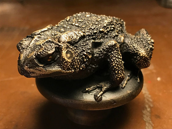 Bronze Cast Toad
