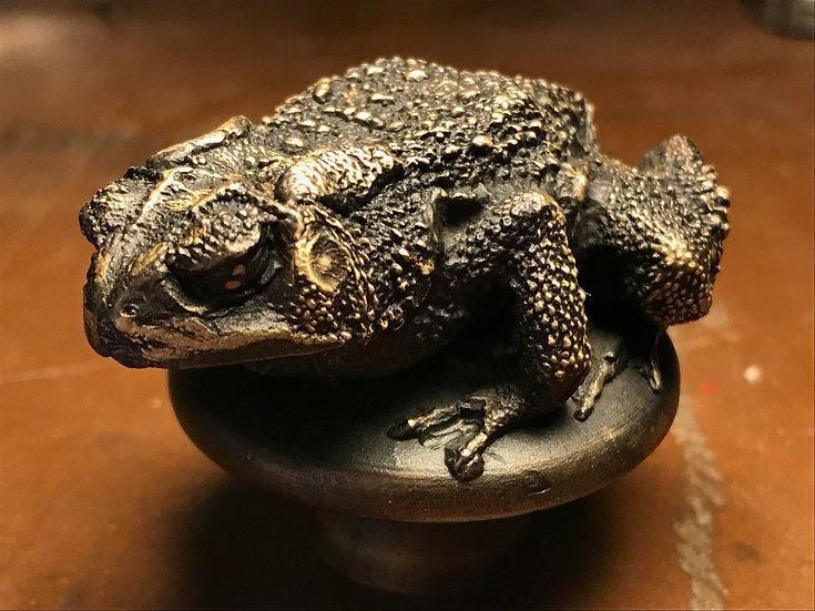 Bronze Cast Toad