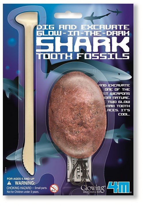 DIG AND EXCAVATE SHARK TOOTH FOSSILS