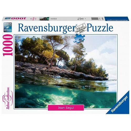 RAVENSBURGER PUZZLE 1000 PCS POINTS OF VIEW