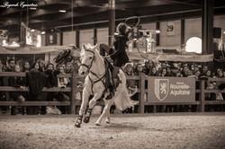 horse show noir et blanc