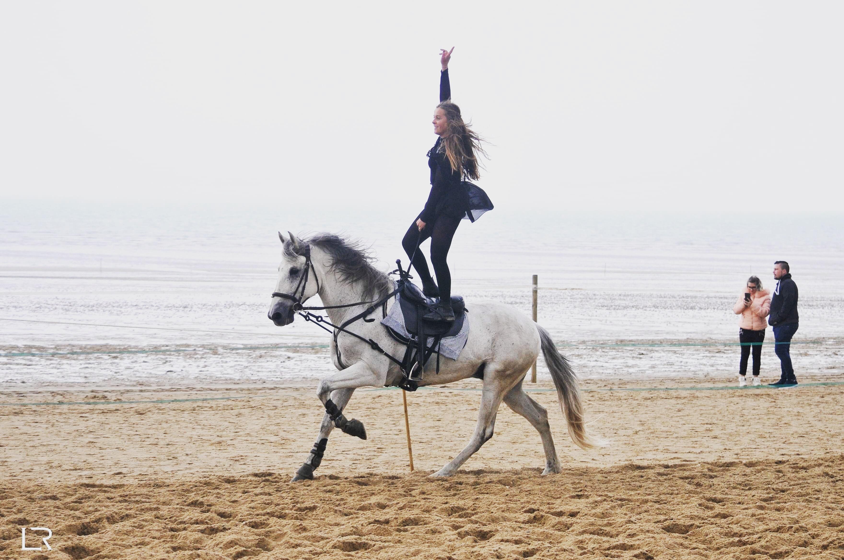 équitation normandie plage