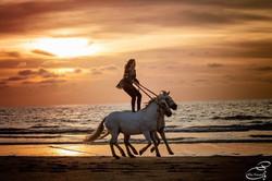 Liberté 2 chevaux Elisa Laville