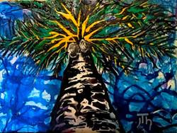 Sierra's Palm 2015
