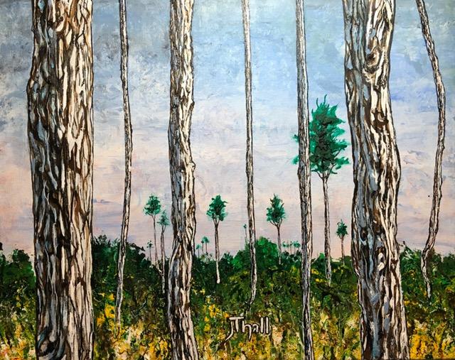 longleaf pines 2018