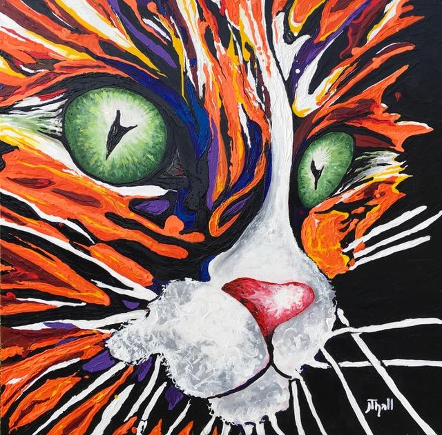Orange Cat 2018