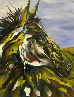 Connie's Horse