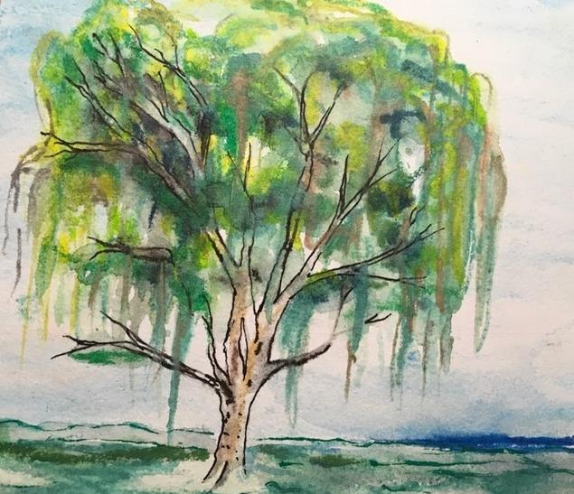 ART willow tree Lubbock 2017_edited