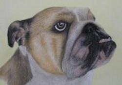 2007 Jesse's Dog 9x12
