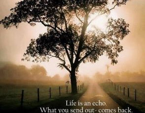 Life is an Echo...