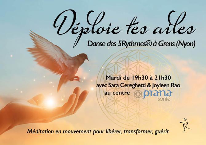 5Rhythms Class in Canton de Vaud