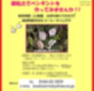 HP用ポップ2.jpg