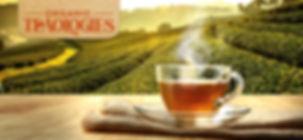 TeaOlogies.jpg