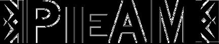 PIEAM_logo_black2.png