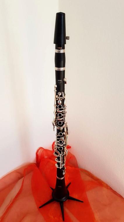 Klarinette lernen bei Musikunterricht Parkstetten (Straubing-Bogen)