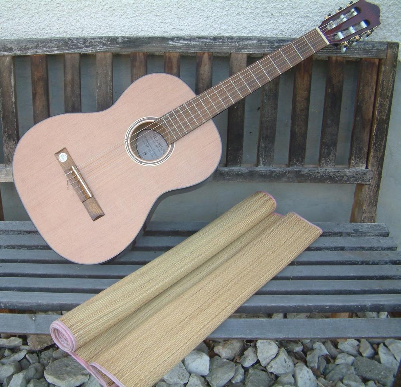 Sommer genießen: Gitarre spielen am Weiher Parkstetten