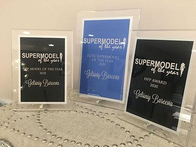 Modeling Article - Gelya's plaques.jpg