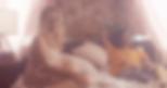 vlcsnap-2018-01-25-11h42m10s852.png